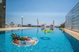 Бассейн. Кипр, Сиренс Бич - Айя Текла : Роскошная вилла на побережье, с 5-ю спальнями, с бассейном, солнечной террасой, барбекю и садом на крыше с захватывающим видом на Средиземное море