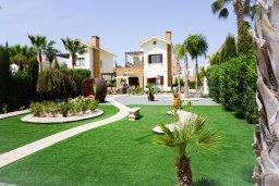 Территория. Кипр, Ионион - Айя Текла : Удивительная вилла с потрясающим видом на море, с 4-мя спальнями, с бассейном, с красивым зелёным садом, с патио и барбекю, расположена у пляжа Potamos Bay beach