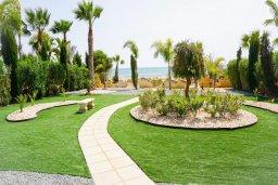 Зелёный сад. Кипр, Ионион - Айя Текла : Удивительная вилла с потрясающим видом на море, с 4-мя спальнями, с бассейном, с красивым зелёным садом, с патио и барбекю, расположена у пляжа Potamos Bay beach