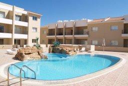 Бассейн. Кипр, Каппарис : Комфортабельный апартамент в комплексе с бассейном, с гостиной, отдельной спальней и балконом