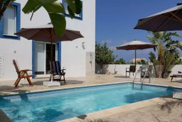 Бассейн. Кипр, Каппарис : Уютная вилла с 2-мя спальнями, с бассейном и частным двориком в окружение пальм