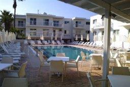 Бассейн. Кипр, Центр Айя Напы : Уютная студия в комплексе с бассейном