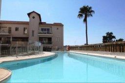Бассейн. Кипр, Ларнака город : Прекрасный апартамент в комплексе с бассейном, с большой гостиной, двумя спальнями, двумя ванными комнатами и балконом