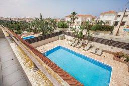 Бассейн. Кипр, Каппарис : Прекрасная вилла с бассейном и зеленым двориком, 4 спальни, 3 ванные комнаты, барбекю, парковка, Wi-Fi