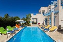 Бассейн. Кипр, Хлорака : Прекрасная вилла с бассейном и зеленым двориком с барбекю, 3 спальни, 2 ванные комнаты, парковка, Wi-Fi