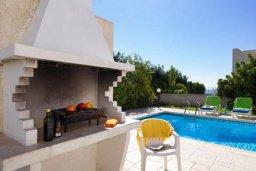 Территория. Кипр, Хлорака : Прекрасная вилла с бассейном и зеленым двориком с барбекю, 3 спальни, 2 ванные комнаты, парковка, Wi-Fi