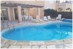 Бассейн. Кипр, Корал Бэй : Восхитительная вилла с 4-мя спальнями, 3-мя ванными комнатами, с бассейном, солнечной террасой с патио, расположена в 300 метрах от пляжа Coral Bay beach