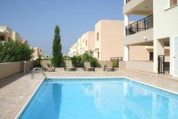 Бассейн. Кипр, Пафос город : Апартамент в комплексе с бассейном, с гостиной, отдельной спальней и балконом