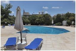 Бассейн. Кипр, Пафос город : Прекрасная вилла с террасой в комплексе с большим бассейном, 3 спальни, 2 ванные комнаты, парковка, Wi-Fi