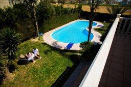 Бассейн. Кипр, Декелия - Пила : Великолепная вилла с большим бассейном и зеленым двориком, 4 спальни, 2 ванные комнаты, парковка, Wi-Fi