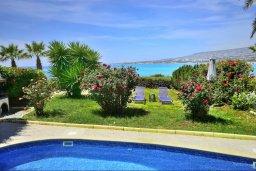 Территория. Кипр, Киссонерга : Уютная вилла с панорамным видом на Средиземное море, с 2-мя спальнями, с бассейном, садом с барбекю и террасой на крыше