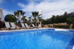 Бассейн. Кипр, Куклия : Шикарная вилла с большим бассейном и зеленой территорией, 4 спальни, 4 ванные комнаты, солярий на крыше, барбекю, парковка, Wi-Fi