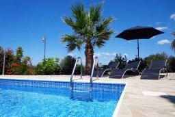 Бассейн. Кипр, Куклия : Прекрасная вилла с бассейном и зеленым двориком с барбекю, 3 спальни, 2 ванные комнаты, парковка, Wi-Fi