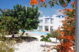 Территория. Кипр, Куклия : Восхитительная вилла с бассейном и зеленым двориком с барбекю, 3 спальни, 2 ванные комнаты, парковка, Wi-Fi