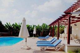 Зона отдыха у бассейна. Кипр, Си Кейвз : Прекрасная вилла с 3-мя спальнями, с бассейном, джакузи, просторным двориком с зелёным садом, с патио и барбекю, расположена в самом восхитительном месте среди банановых плантаций