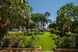 Территория. Кипр, Фиг Три Бэй Протарас : Роскошная вилла на берегу моря, с 4-мя спальнями, с бассейном, красивым зелёным садом с патио и барбекю, расположена в 20 метрах от прекрасного уединенного пляжа