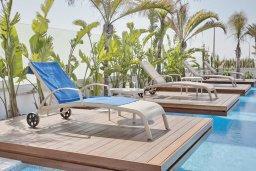 Зона отдыха у бассейна. Кипр, Аммос - Лимнария Бич : Современная вилла с видом на Средиземное море, с 6-ю спальнями, с бассейном с джакузи, меблированной террасой на крыше, расположена в 140 метрах от пляжа