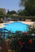 Бассейн. Кипр, Гермасойя Лимассол : Апартаменты с 3-мя отдельными спальнями в комплексе с бассейном для 6-ти гостей