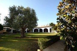 Фасад дома. Кипр, Перволия : Шикарная вилла с большим бассейном и зеленой территорией, 5 спален, 3 ванные комнаты, парковка, Wi-Fi