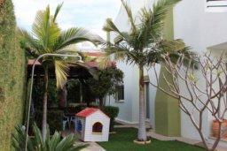 Территория. Кипр, Св. Рафаэль Лимассол : Чудесная вилла с 3-мя спальнями, с бассейном, тенистой террасой с патио и барбекю