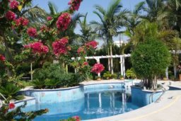 Бассейн. Кипр, Айос Тихонас Лимассол : Величественная вилла класса люкс с 7 спальнями, с бассейном, панорамным видом на море и зелёным садом, расположена в Лимассоле