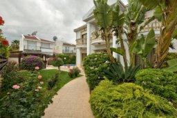 Зелёный сад. Кипр, Айос Тихонас Лимассол : Роскошная вилла с 4-мя спальнями, с бассейном, зелёным садом, беседкой с патио и барбекю