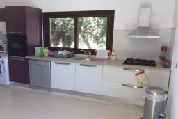 Кухня. Кипр, Эпископи : Роскошная вилла с 7-мя спальнями, с собственным бассейном и зелёным садом, расположена в Лимассоле для 14-ти гостей