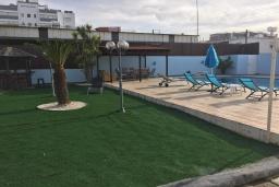 Территория. Кипр, Эпископи : Роскошная вилла с 7-мя спальнями, с собственным бассейном и зелёным садом, расположена в Лимассоле для 14-ти гостей