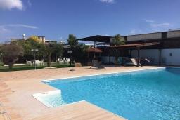 Бассейн. Кипр, Эпископи : Роскошная вилла с 7-мя спальнями, с собственным бассейном и зелёным садом, расположена в Лимассоле для 14-ти гостей