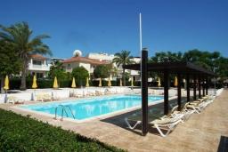 Бассейн. Кипр, Перволия : Прекрасная вилла с 3 спальнями с для 6-ти гостей с общим бассейном и двориком