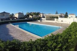 Бассейн. Кипр, Перволия : Прекрасная вилла с 2 спальнями с для 5-ти гостей с общим бассейном и двориком