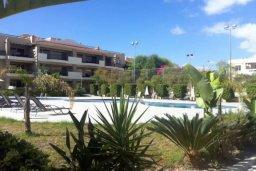 Территория. Кипр, Декелия - Пила : Прекрасные апартаменты с 2-мя спальнями в частном комплексе, с общим бассейном и  садом для 6-ти гостей в Ларнаке