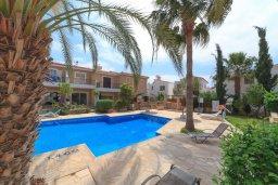 Бассейн. Кипр, Айя Марина : Прекрасный таунхаус с 2 спальнями, террасой с патио, расположен в комплексе с бассейном