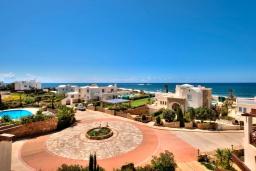 Территория. Кипр, Хлорака : Потрясающая вилла с видом на Средиземное море, с 4-мя спальнями, расположена в комплексе с бассейном в 50 метрах от моря