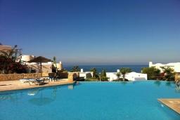Бассейн. Кипр, Хлорака : Потрясающая вилла с видом на Средиземное море, с 4-мя спальнями, расположена в комплексе с бассейном в 50 метрах от моря