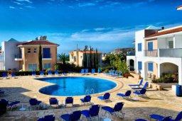 Бассейн. Кипр, Пейя : Уютные апартаменты с 3-мя спальнями для 5-ти гостей