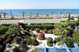 Территория. Кипр, Лачи : Прекрасная вилла с панорамным видом на море и гавань Лачи, с 3-мя спальнями, с красивым зелёным садом, патио, барбекю и с уютной меблированной террасой на крыше