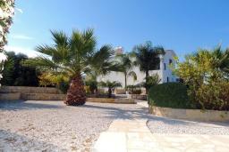 Территория. Кипр, Полис город : Очаровательная вилла с 3-мя спальнями, с бассейном с подогревом, джакузи, тенистой террасой с патио и каменным барбекю, расположена среди апельсиновых садов на окраине Полиса