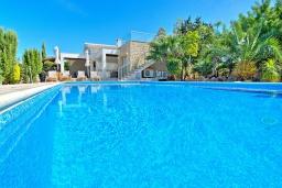 Бассейн. Кипр, Лачи : Роскошное бунгало с террасой на крыше с панорамным видом на море и lounge-зоной, с 3-мя спальнями, с бассейном, джакузи, летней кухней и барбекю, расположено около пляжа Souli Beach
