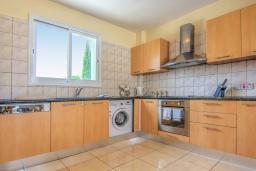 Кухня. Кипр, Полис город : Роскошное бунгало с 3-мя спальнями, с бассейном, тенистой террасой с патио и барбекю, в окружение красивого зелёного сада
