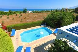 Территория. Кипр, Аргака : Очаровательная кипрская вилла с 3-мя спальнями, с бассейном, в окружение лимонных и апельсиновых деревьев, с тенистой террасой с патио и барбекю