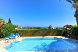 Бассейн. Кипр, Аргака : Очаровательная вилла с 3-мя спальнями, бассейном, пышным зелёным садом, тенистой террасой с патио и барбекю