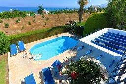 Территория. Кипр, Аргака : Очаровательная вилла с 3-мя спальнями, бассейном, пышным зелёным садом, тенистой террасой с патио и барбекю
