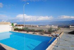 Бассейн. Кипр, Скулли : Очаровательная вилла с 3 спальнями с для 6-ти гостей с бассейном и садом