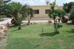 Территория. Кипр, Св.Георг : Очаровательная вилла с 3 спальнями с для 6-ти гостей с бассейном и садом