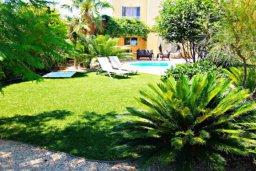 Территория. Кипр, Лачи : Потрясающая вилла с 3-мя спальнями, с бассейном, красивым ландшафтным садом, тенистой террасой с патио и барбекю
