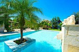 Бассейн. Кипр, Аргака : Эксклюзивная вилла с 3-мя спальнями, с бассейном с водопадом, с настольным теннисом, барной стойкой и ландшафтным садом