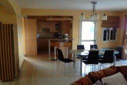 Кухня. Кипр, Лачи : Прекрасная вилла с 3-мя спальнями, с бассейном, красивым ландшафтным садом, тенистой террасой с патио и барбекю