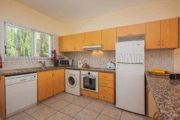 Кухня. Кипр, Корал Бэй : Великолепная вилла с 3-мя спальнями, с бассейном, зелёным садом с апельсиновыми и лимонными деревьями, тенистой террасой с патио и барбекю