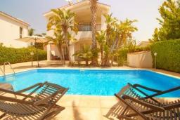 Бассейн. Кипр, Корал Бэй : Уютная вилла с 3-мя спальнями, с бассейном, тенистой террасой с патио, расположена всего в нескольких минутах ходьбы от пляжа Coral Bay Beach